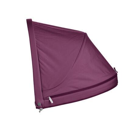 Canopy Xplory - Prune