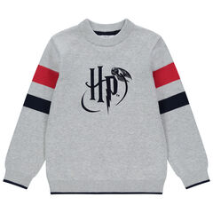 Pull en tricot à logo Harry Potter et bandes contrastées pour enfant garçon , Orchestra