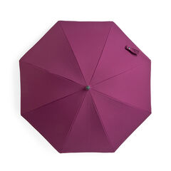 Ombrelle - Prune
