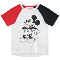 Tee-shirt manches courtes tricolore avec Mickey ©Disney printé