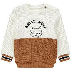 Pull en tricot bicolore avec renard printé